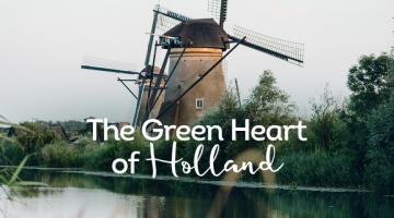 Green-heart-holland-blog