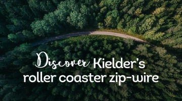 kiekder-zip-wire-header