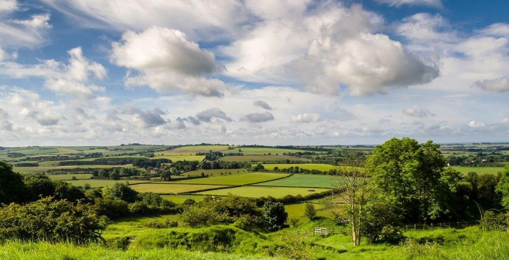 View of Red Hill Nature Reserve,Stenigot, Louth, in the Lincolnshire Wolds